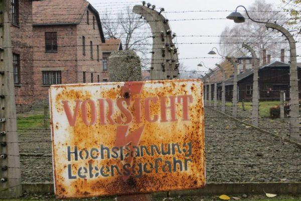 Trips to Auschwitz